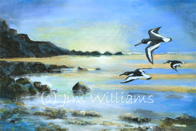 Oystercatchers painting